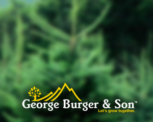 George Burger & Sons