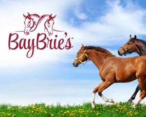 BayBrie's Horse Farm